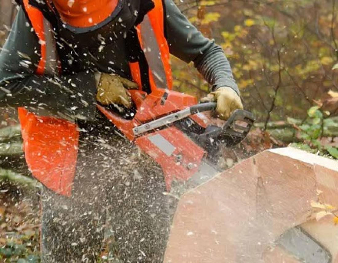 Chainsaw Courses - Holland TCS