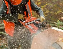 Chainsaw Courses